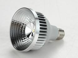Retail LED Lamp